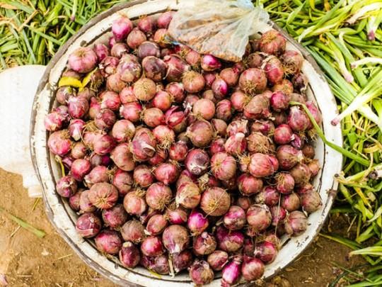 Ghana Onions