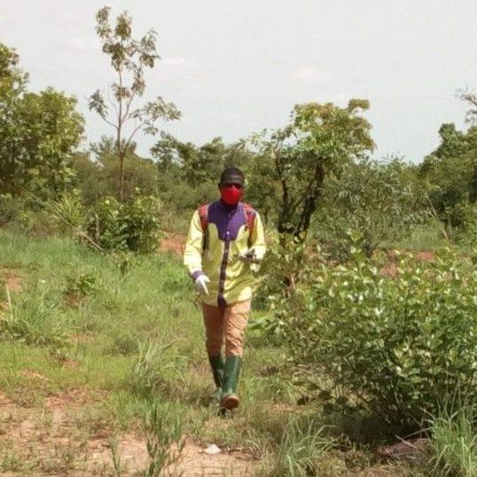 Ghanian farmer